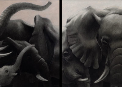 Elephants 02 (diptych)